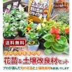 よみがえる私のお庭〜Let's Re ガーデニング 花苗16個と古い土がふっかふか になる土壌改良材セット