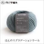 毛糸 ダルマ毛糸 ほんのりグラデーションウール 1玉単位 手編み 秋冬毛糸