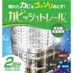 【ポイント5倍】東急ハンズ カビッシュトレール 全自動洗濯機用 洗浄剤