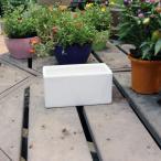 陶器鉢 植木鉢 ホワイトポット横長型 小 幅20cm×高さ10cm