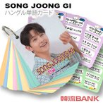 【送料込み】【代引不可】【速達】 ソン・ジュンギ (SONG JOONG GI) グッズ - 韓国語 単語 カード セット (Korean Word Card) [63ピース] 7cm x 8cm SIZE