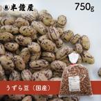 うずら豆(国産)750g