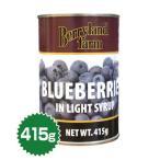 ブルーベリー 4号缶