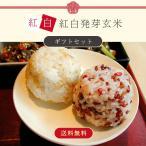 送料無料 岡山県産 紅白発芽玄米(化粧箱入り)(半鐘屋オリジナル)