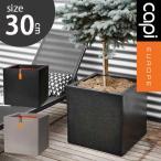 【植木鉢/送料無料】高級感のある樹脂製植木鉢