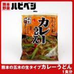 もっこす親父おすすめ 熊本の五木のカレーうどん【220g(めん200g)】同梱専用 ※こちらの商品は野菜セット購入した方のみの同梱商品になります。