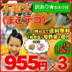 訳あり1.5kg×3箱 3月中旬より順次発送♪庄村さんが作る熊本県不知火地区特産 不知火(通称デコポン) 1箱増量+旬のお野菜1個のおまけ付♪