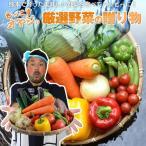 熊本農家がんばるばい 野菜セット 野菜詰合せ もっこす野菜セット7種類プラスおまけ野菜付