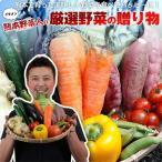 熊本農家がんばるばい 野菜セット 野菜詰め合わせ イケメン野菜セット12種類プラスおまけ野菜付