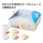 ヨーグルトムース 6個入り ギフト 粗品 販促品 記念品 景品 プレゼント