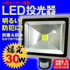 投光器 LED投光器 30W 人感センサー搭載 感知ライト LED 作業等 工事 ガーデン 庭 投光器 WI-30W