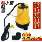 水中ポンプ 12V 海水対応 小型&軽量 70リットル 25mm径 水中ポンプ BL-2512