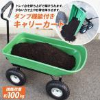 ダンプカート ガーデンカート キャリーカート 耐荷重100kg ガーデニング 台車 TC2145