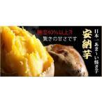 お歳暮 ギフト 種子島で一番美味しい 安納芋 石焼き芋500g 景品 2016 和菓子 お取り寄せ