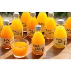 お取り寄せグルメ お歳暮 和歌山 伊藤農園 5種の柑橘ジュース 送料込み