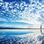 父母ヶ浜絶景カレンダー2020 カレンダー 三豊市 父母ヶ浜 ちちぶがはま 2020