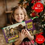 恐竜発掘キット 恐竜おもちゃ 恐竜卵玩具 12個セット ティラノサウルス 子供 プレゼント ギフト