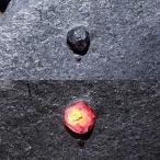 ショッピングGARNET レッドガーネットinグラファイト(黒鉛)約40g 原石 天然石 graphite 黒鉛 Garnet