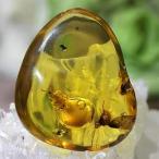 《超激レア》白アリ入りドミニカ産水入琥珀 小石 天然虫入り琥珀 baltic amber (アンバー) cockroach パワーストーン 化石 天然石