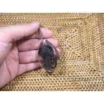 本物の昆虫を閉じ込めたアクリルキーホルダー(黒サソリ)