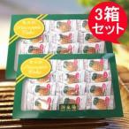 新東陽パイナップルケーキ【3箱セット】鳳梨酥 台湾お土産