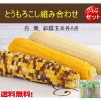 とうもろこし組み合わせ【24点セット】白糯玉米、黄糯玉米と彩糯玉米各8本 250g 真空パック調理済み 温めるだけ   中国産