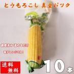 黄糯玉米【10本セット】黄もちとうもろこし 真空パック 即席トウモロコシ 調理済み 温めるだけ 送料無料(沖縄北海道地域以外)250g×10