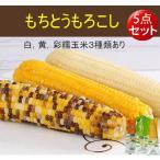 彩糯玉米(1本入) 250g【5点セット】とうもろこし 真空パック調理済み 温めるだけ   中国産