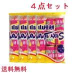 楽氏山査餅 112.5g 【4点セット】 112.5g×4  サンザシのお菓子 中華食材  ネコポスで送料無料