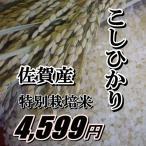 29年度産★九州佐賀県産★送料無料★コシヒカリこだわり製法米玄米10kg