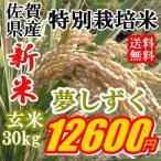 新米特A評価令和2年産特価玄米30kg九州佐賀県特別栽培米夢しずく精米可