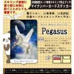 スキミング防止フィルム内蔵 ステッカー シール グッズ スキム ブロック 日本製/1910Pegasus 特殊