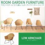 ラタン家具 椅子 ラウンジチェアー ローアームチェア カフェ風 ラタン×スチール