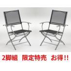 2脚組 リクライニング ガーデンチェア 折りたたみ式 椅子 Chair ガーデンファニチャー 07GF-C2S  送料無料