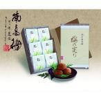 紀州南高梅 梅の実りはちみつ入り梅干 AM1-67-7 返礼品 ギフト ご贈答 プレゼント 返礼品 内祝い