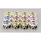 ショッピングアイスクリーム 送料無料/十勝白い牧場アイスクリーム SE8-293-6