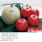 静岡マスクメロン&信州サンふじりんご 02-22046 フルーツ 果物 ギフト 贈答品 お中元 お歳暮 人気