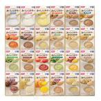 介護食 レトルト おいしくミキサー 24種 お試しセット 24種類×1袋 合計24袋