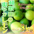 レモン 3kg(箱込約3kg) 国産 訳あり・ご家庭用 送料無料(東北・北海道・沖縄県除く)