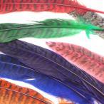 フェザー 羽根 キジ 10枚セット 雉 染め 装飾 素材 手芸 ピアス イヤリング ネックレス コサージュ アクセサリー パーツ ハンドメイド コスプレ ダンス 髪飾