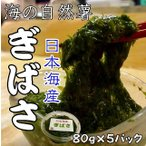 hasegawasengyo_akamoku5p