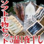 山形県産 自家製ソフト干物セット 5品(ハタハタ ホッケ スルメイカ 柳カレイ イワシ) 一夜干し ひもの 高級魚 海鮮 鮮魚