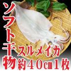 山形県 自家製ソフト干物 スルメイカ 約40cmサイズ(1枚入り)