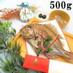 お食い初め 鯛 ハマグリ 歯固め石 セット 500g 送料無料 祝鯛 敷き紙 鯛飾り 祝い箸 焼き鯛 料理 はまぐり 天然 真鯛
