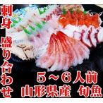 山形県産 刺身盛り合わせ 5?6人前 旬の鮮魚 冷蔵 お祝いに最適