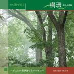 528hz CD ハルニレ2 樹環 JU-KAN 知浦伸司 送料無料 試聴OK