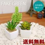 送料無料 多肉植物3個セット フェイクグリーン