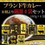 ブランド牛のビーフカレー【メール