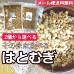 ワンコイン ダイエット 2種より選べる そのまま食べる はとむぎ 150g (胚芽付き・苦味控えめ ) 健康食 美容食 美肌 はと麦 ヨクイニン ハトムギ 送料無料