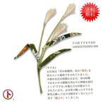 CHIRIKO ちリコパーツ すすき 3袋セットのお値段です  手芸 手作り 洋裁